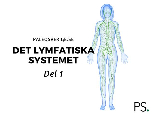 Det lymfatiska systemet – del 1