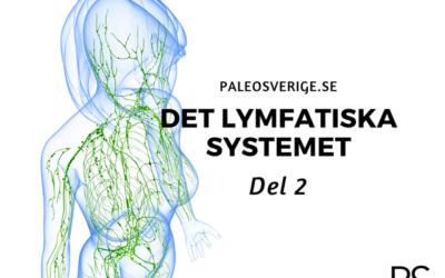 Det lymfatiska systemet – del 2