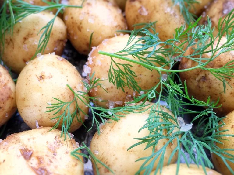 Är potatis verkligen Paleo?
