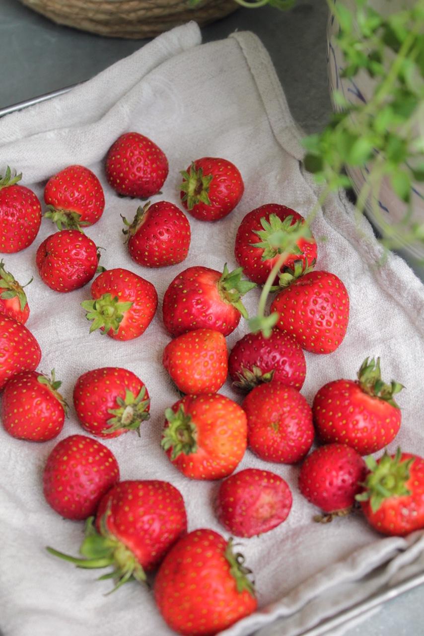 ta-hand-om-dina-jordgubbar